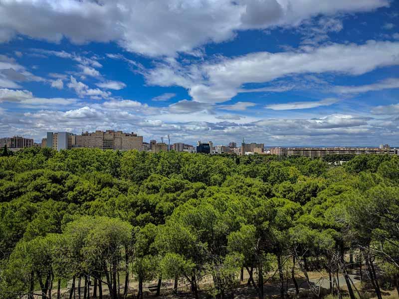 Vistas del parque y de la ciudad desde el monumento de Alfonso I el Batallador