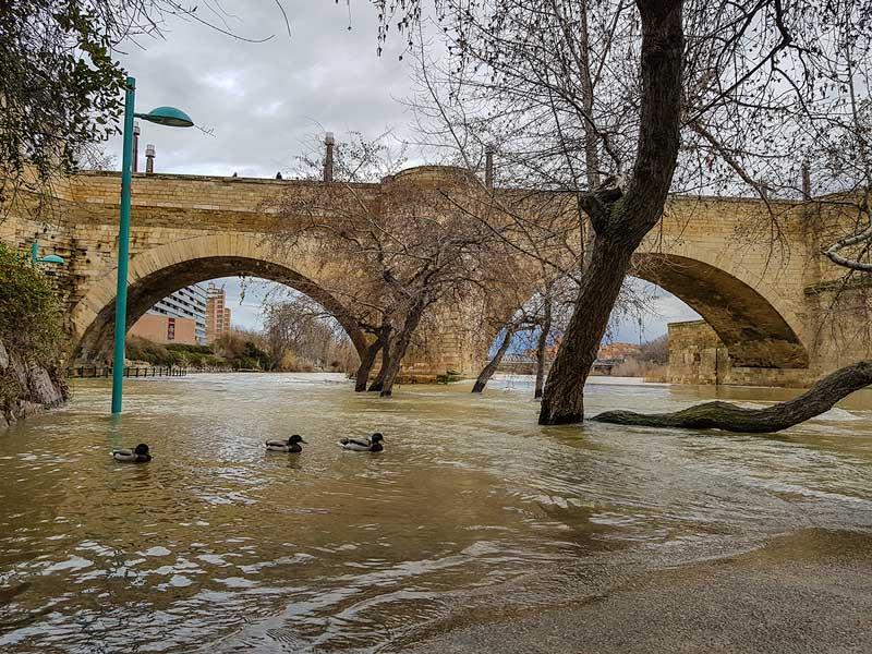 Crecida del Ebro - Zaragoza