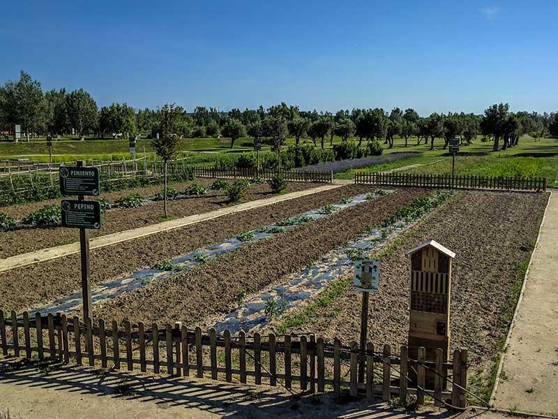 Jardín de los Alimentos - Parque del Agua - Zaragoza